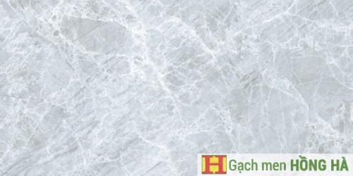 Gạch ốp tường 300x600mm 07.05.3107