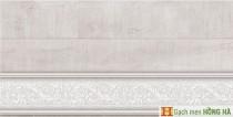 Gạch ốp tường 300x600mm 05.05.3975