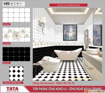 Gạch ốp tường 30x60 TATA HA3635