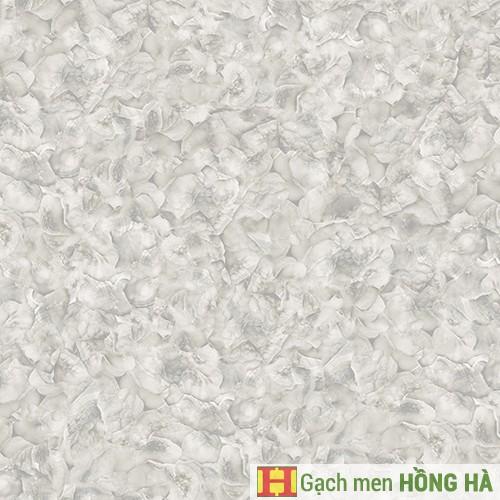 Gạch lát Porcelain kích thước 600x600 - MP6021G