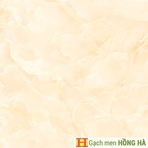Gạch lát Porcelain kích thước 600x600 - VP6521G