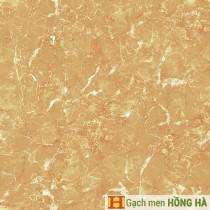 Gạch lát Porcelain kích thước 600x600 - VP6522G