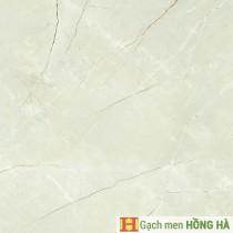 Gạch lát Porcelain kích thước 600x600 - MP6026G