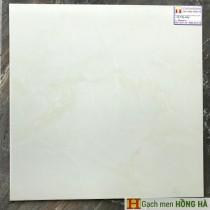 Gạch lát nền 60x60 ct01