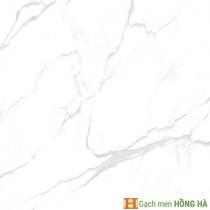 Gạch lát nền Catalan 600x600mm 06.06.6917