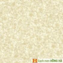 Gạch lát Porcelain kích thước 600x600 - MP6010G