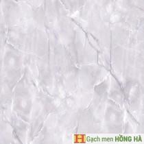 Gạch lát Porcelain kích thước 600x600 - MP6601