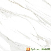 Gạch lát Porcelain kích thước 600x600 - MP6802