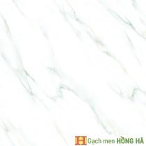 Gạch lát Porcelain kích thước 600x600 - VP6517G
