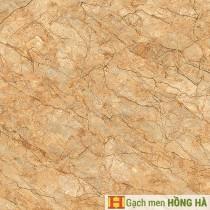 Gạch lát Porcelain kích thước 600x600 - VP6523G