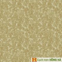 Gạch lát Porcelain kích thước 600x600 - VP6527G