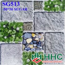 Gạch 50x50 lát sân SG513