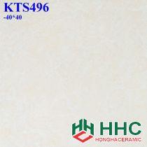 Gạch 40x40 KTS496