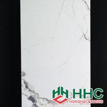 Gạch ốp tường 60x120 ấn độ NB1263008
