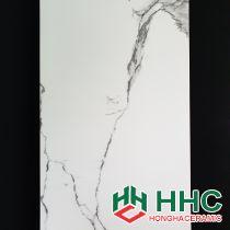 Gạch ốp tường 60x120 ấn độ NB1266003